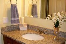 Champaign Granite Sink