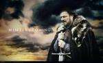 Eddard-Ed-Stark-Winter-is-Coming-1[1]